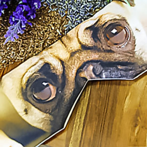pug eye soothing mask